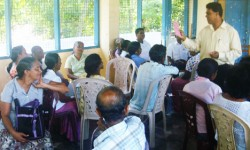 Citizens' committees established in local bodies