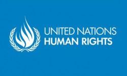 THE UN INVESTIGATION INTO HUMAN RIGHTS IN SRI LANKA
